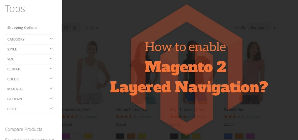 Magento 2 Layered Navigation